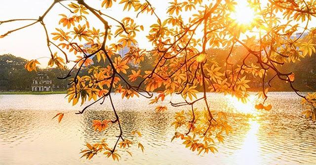 Mùa thu Hà Nội có gì đặc biệt? Mùa thu bắt đầu từ tháng mấy?